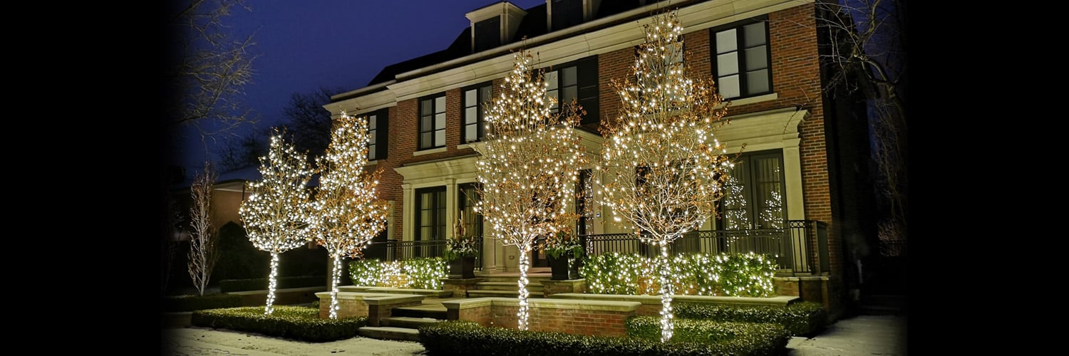 Lawrence Park Holiday Lighting with canopy wrap, warm white shrub lighting
